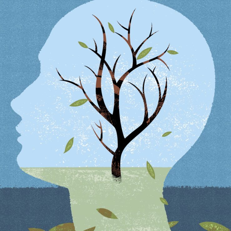 Silhouette of a head with a tree growing in the outline demonstrating the impact that Alzheimer's may have on the brain.