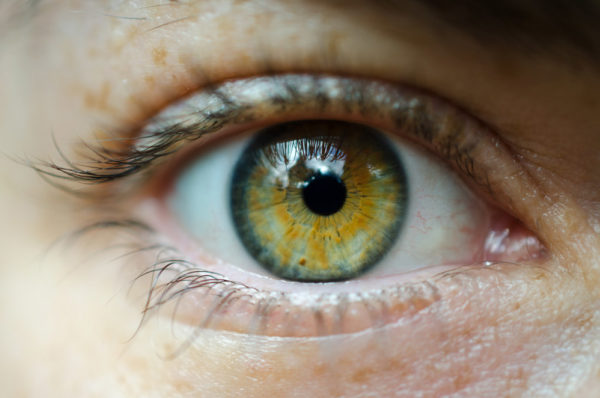 Photo of child's eye by David Gabriel Fischer via Flickr