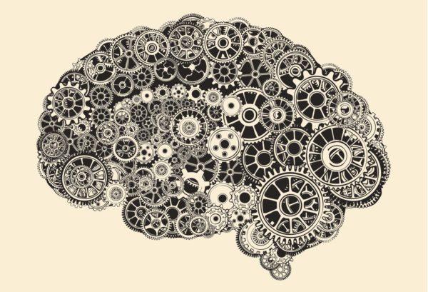 Brain Mechanical Web